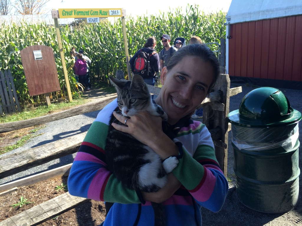 I tried to steal this cat. Vermont!