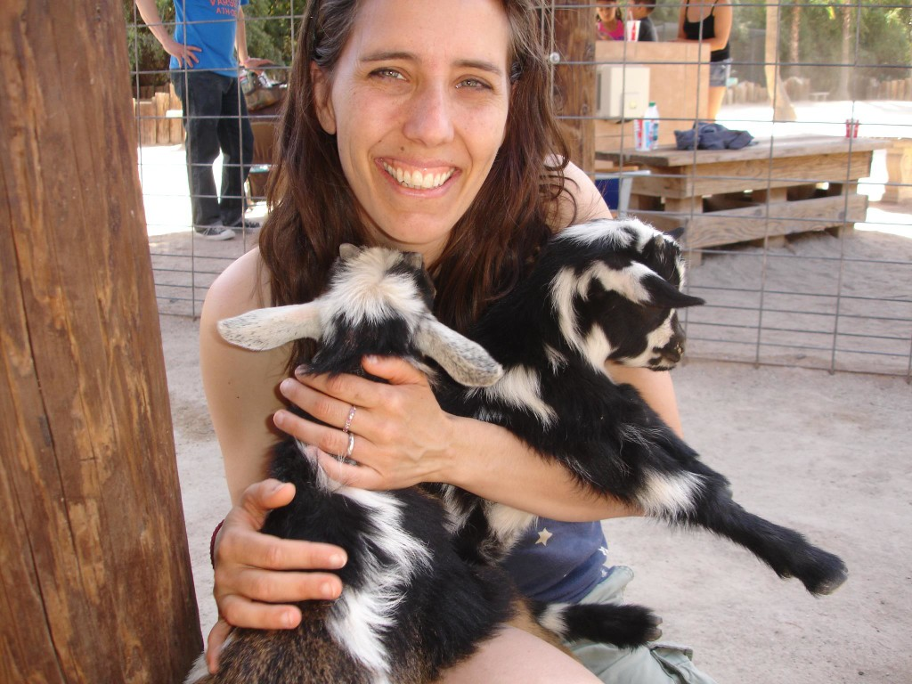 I tried to steal these baby goats. Arizona!